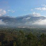 Photo of Taray Botanico
