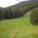 Enlarge to see one bear in center of the ski trail and the second one to the left of it by the t