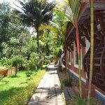 Athreya Ayurvedic Centre Foto