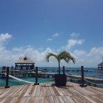 Foto di Dolphin Discovery Isla Mujeres