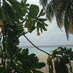 Photo de Biyadhoo Island Resort