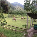 Foto de Green Horse Ranch