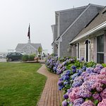 View of hotel grounds from inner courtyard. Hydrangeas in full bloom in mid-July. Note parking!