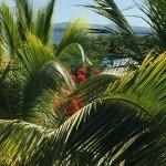 Photo de Brisas Trinidad del Mar