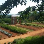 Kitchen Garden at Monticello