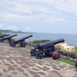 English cannons at Ft. George