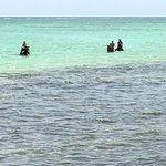 Swim portion of the ride