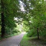 A. V. Fomin Botanical Garden Foto
