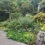 Foto de Happy Valley Gardens