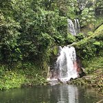 Photo de Blue River Resort & Hot Springs