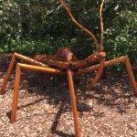 Big Bugs - Assassin bug