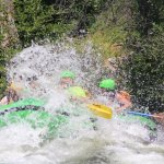 Awesome time navigating the Kern river with SoCal Rafting.
