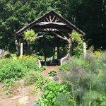 The Swag Garden