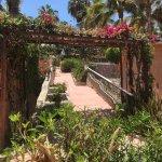 Foto de Hotel Buena Vista Beach Resort
