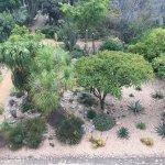 Photo of Ethnobotanical Garden