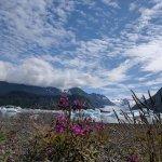 Grewingk Glacier and Lake