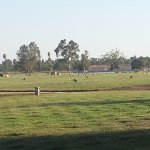 Foto de Riverside National Cemetery