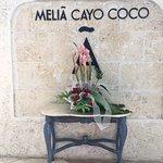 Foto de Melia Cayo Coco