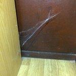 Toile d'araignées dans plusieurs recoins de la chambre
