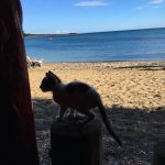 Photo of Spiaggia Taverna