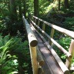 Salmon River Trail bridge.
