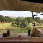 Photo de Serengeti Bushtops Camp