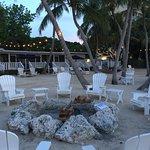 Foto de Coconut Palm Inn