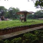 National Zoological Park of Delhi