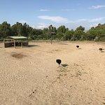 Photo of Izmir Wild Life Park