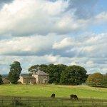 Dunns Houses & Surrounding Landscape