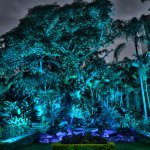 Jardin Malinche