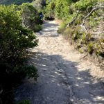 Photo of Wilsons Promontory National Park