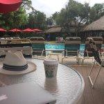 Photo of Best Western Naples Inn & Suites