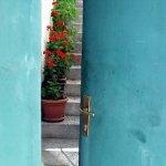 Greek flowers throgh a doorway