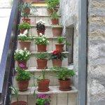 Greek flower-pot view