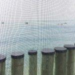 Fanizzi's by the Sea