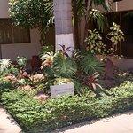 Photo de Wyndham Garden Ciudad Obregon