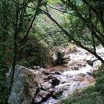 Little waterfalls along the way