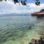 Photo of Turtle Bay Dive Resort