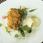Roasted fillet of south coast hake