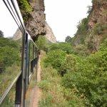 El tren entre rocas, árboles y túneles. Había ejemplares de arrayanes.