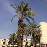 Photo of Isrotel Riviera Club Hotel