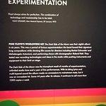 Ingenieros de la experimentación