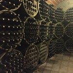 We took a tour of their wine cellar.