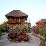 Photo of Manyara Wildlife Safari Camp