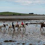Photo de Croagh Patrick Stables
