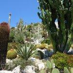 Photo of Le Jardin exotique d'Eze