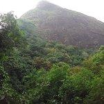 Photo of Catacumba Park