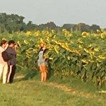 Shelby Farms Park