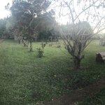 Photo of El Refugio Del Mensu